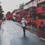 Essex lorry deaths: 39 found dead were Chinese nationals 10