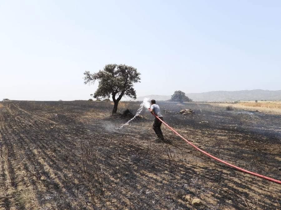 Fire between  Sınırüstü & Altınova Iskele (Video) (Update) 30