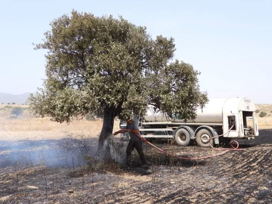 Fire between  Sınırüstü & Altınova Iskele (Video) (Update) 33