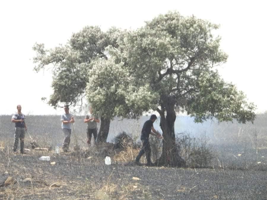 Fire between  Sınırüstü & Altınova Iskele (Video) (Update) 32
