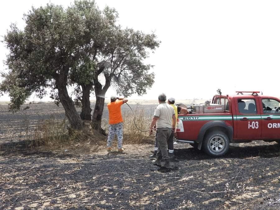 Fire between  Sınırüstü & Altınova Iskele (Video) (Update) 27