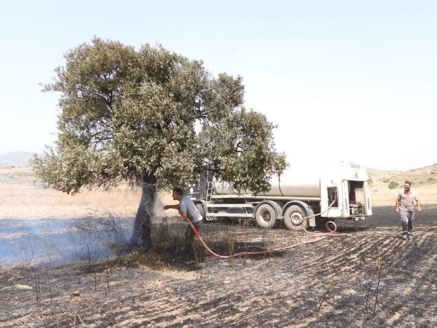 Fire between  Sınırüstü & Altınova Iskele (Video) (Update) 26