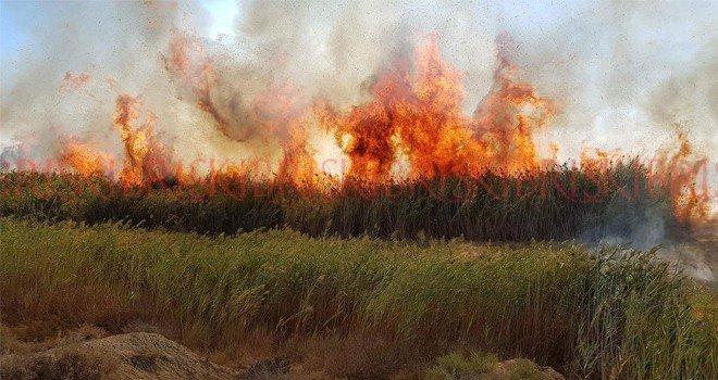Another Fire Aslanköy 4