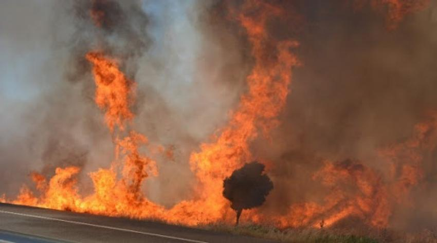 Fire between  Sınırüstü & Altınova Iskele (Video) (Update) 25