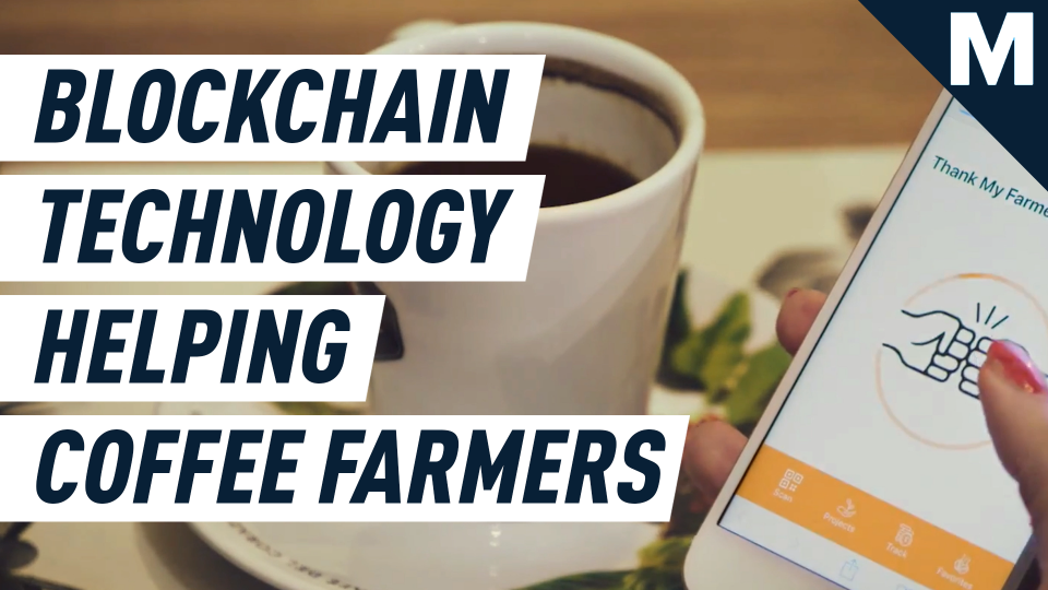 Blockchain technology helps these farmers be more sustainable