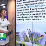 Bubonic plague: What is it & should we be concerned about new case in China's Inner Mongolia region