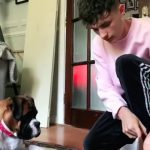 Dog Looks Confused When Owner Performs Magic Tricks With Apple