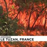 Firefighters tackle forest blaze in France's south-west Gironde region