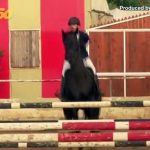 Giddy Up! Palestinian Equestrian Competitions Saddle up to Reopen as Lockdown Eases!