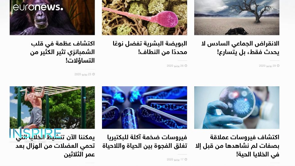 How is science building Iraq's former glory, and the minds of young Saudis?