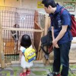 Little Girl Gets Scared By Goat