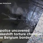 Six arrested after Dutch police discover 'prison and torture chamber' in sea containers