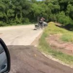 Guy Drives Airboat in Middle of Highway