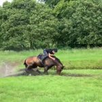 Guy Falls on His Back While Horse Riding